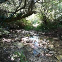 Il guado del torrente