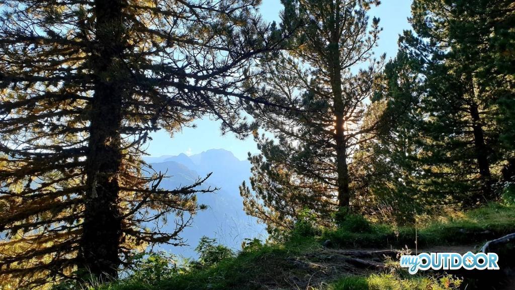 Scorcio di Catinaccio dal bosco della Val Duron