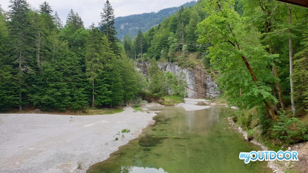Nel mezzo della foresta bavarese