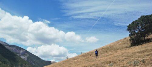 I bellissimi prati del Monte Val Canale